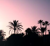 Marbella Landscape